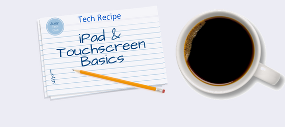 iPad and Touchscreen Basics